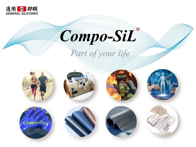 The Introduction of Compo-SiL®